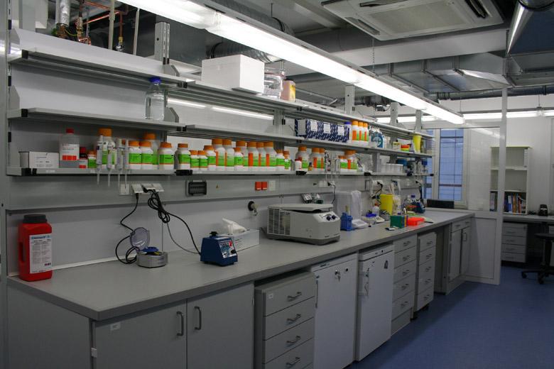 Zentrum für Innovationskompetenz (ZIK) B-Cube Dresden Phase 1